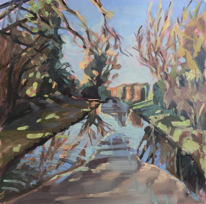 Watery Lane/winter sun/reflections/sunshine on water/country lane/abstract landscape/landscape