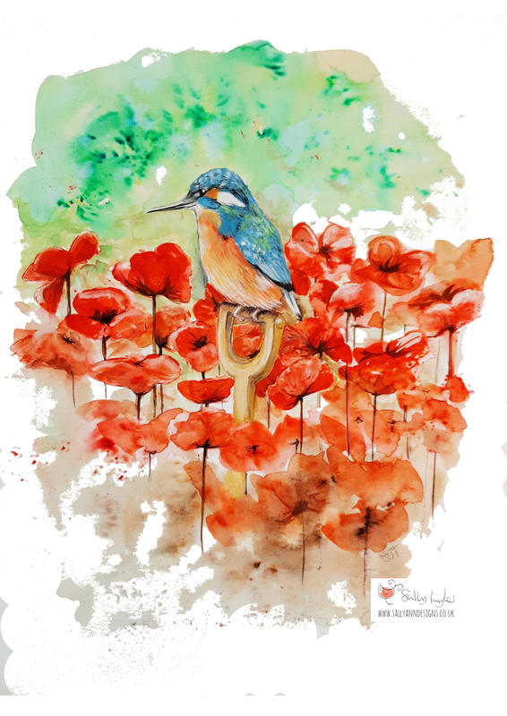 Kingfisher and Poppies  Gouache on mixed media paper  A3 (42 x 29cm portrait)  £150