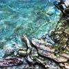 Beach combing ; mixed media seascape - Toying with texture