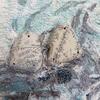 Peloponnese Conversations- Picking up Pebbles 3 Clashing rocks