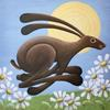 """"""" Hare We Go Again"""" acrylic on box canvas 60cm x 60cm"""