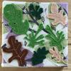 Henri Matisse Inspired 'Forest Floor'
