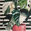 Variegated Monstera on Stripes (20x30cm) - contemporary botanical inspired plant painting