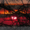 Eye of the Sun, photo based digital art. L/edition Giclee print.  38 x 27 cm