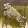 Leaping lamb/spring/animals/joysofspring