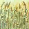 Cornfields - Acrylics mixed media - Toying with texture