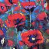 Red poppies -  soft pastel painting on pastel mat .