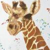 Whipsnade baby - brusho Natural world