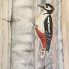Woodpecker on Silver Birch in acrylic