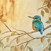 Kingfisher. Framed Watercolour. 59 x 49cm.