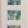 Reflections - Solar Print