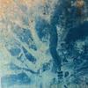 'Albert' Cyanotype on Canvas 20x20cm