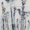 Alliums & Bluebells and underglazes on framed porcelain tiles