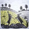 Two hares 'boxing' in the Spring, field landscape.