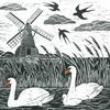 Swans at Wicken Fen, near Ely, a lino cut.