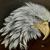 Bald Eagle. Acrylic on Canvas Board