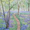 'Bluebell Woods' Watercolour