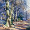 "Brian Robinson - Winter Sunlight 15"" x 11"""