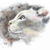White Cat. Painted in Brusho Crystal Pigments