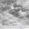 Cloud Study #5 (detail) : Pencil Drawing