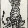 """""""Rex"""" the silver Bengal cat, pen and ink, A4, commission for a private customer"""