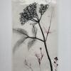 Elderflower, underglazes and transparent glaze on framed porcelain tile
