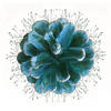 Frosted Pine Cone,  Limited edition of 50, digital collâge, giclée print, 40 X 40 cm and 30 x 30 cm, blue-green pine cone and wild flowers
