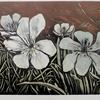 White tulips. V/E Lino print .Framed 49 cmx 41cm. £90.00