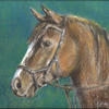 Going out. Bay horse. Paste on paper