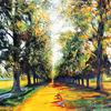 Avenue of Trees - Rothamsted Park