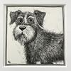 """Bodie"" an original pen and ink illustration on paper 14.5cm x 14.5cm"