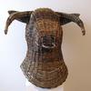 Ox head by Hazel Godfrey