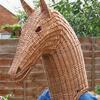 Horse head by Hazel Godfrey