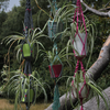 Macrame Hanging Pot Holders - various colours - all handmade from recycled cotton.