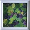 Blackberries :  Acrylic:  Price   £45 :  30x30cm  Framed