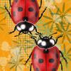 Ladybirds - Digital iPad Art