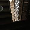 Stairs. View from sick bed during isolation. Photograph. Image from my video