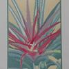Aloe - Linoprint