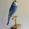 Budgie - needlefelted sculpture mounted on a wood perch and base