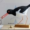 Oystercatcher - needlefelted sculpture mounted on a wood base