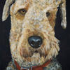 Hector the airedale, acrylic painting