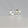 Silver and gold star, stud earrings