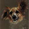 Happy dog portrait commission