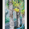 Sharpitur Palms - watercolour