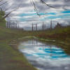 """Milton Keynes Canal way, Original Landscape, Oil Painting, 22x18"""" canvas, Sky Refections in canal, over hanging branches"""