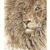 Leo Lion - Walnut Ink