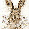 Mad March Hare - Walnut Ink