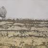 Melange Ochre - Original Print inspired by rubbings taken from plants in my garden - Marian Hall