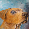 Marley (Commission) (Oils) - The Natural World