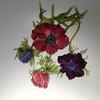 Anemones. Botanical watercolour.